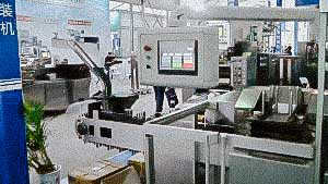 Automatic Blister Packaging Machine with Capsule Pharmaceutical Factory