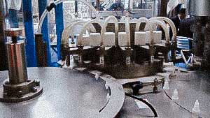 Equipment for automatic bottling and capping of spray bottle with liquid