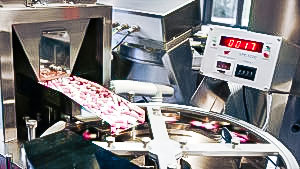 Automatic equipment for counting and packing of gelatin capsules into bottles USA